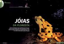 Luis Louro Fotografia - Revista Foto Plus 2005 - Artigo