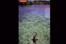 Luis Louro - Photography - O Mundo da Fotografia Magazine 10-2006 - Article